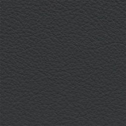 Infinity Bear Kleos Upholstery