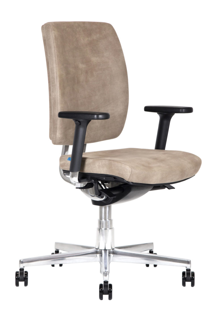 BB219 Chair - Leather
